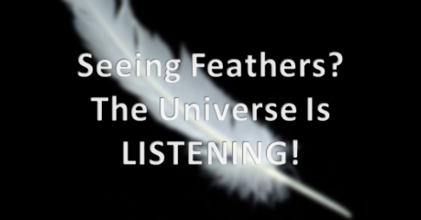 Bird Feathers And Law Of Attraction Signs Of Manifestation Quick Note